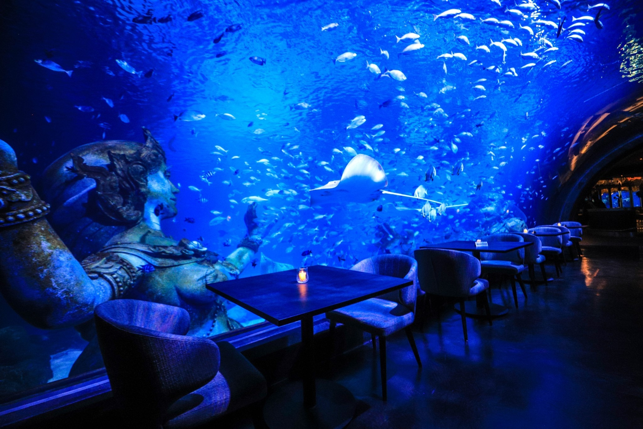 Thailand's First and Only Underwater Dining!